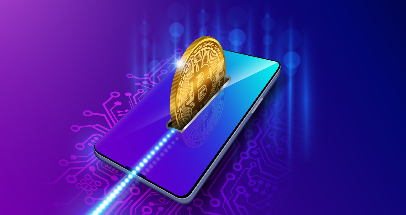 What is a Cryptocurrency Wallet and how should it be used