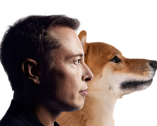 Does elon musk really work with Dogecoin?