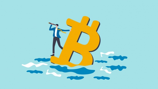 The ups and downs of the market value of cryptocurrencies
