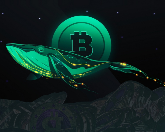 Whales are buying more bitcoins than ever before